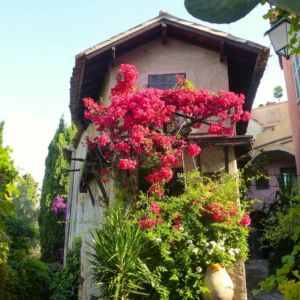 cagnes-flower-house