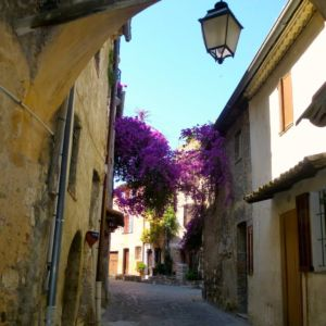 cagnes-flowered-lane